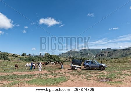 Clarens, South Africa - March 18, 2020:  Horses, A Car And Trailer And People At Di Bus Stop, A Road