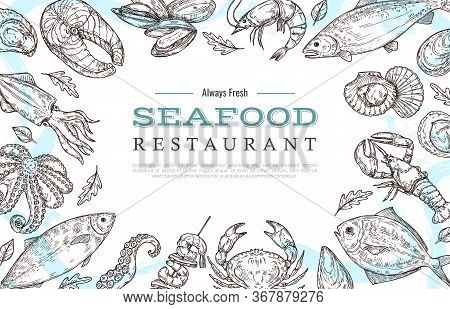 Sketch Seafood Banner. Drawing Fish Crab Lobster Salmon. Restaurant Cafe Menu Vintage Poster Or Flye