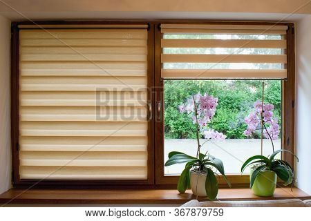 Window Roller, Duo System Day And Night.  Cozy Home Interior.