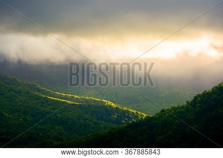 Fog And Mist Above The Forest. Beautiful Morning Nature In Mountains. Landscape With Clouds On The S