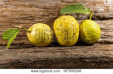 Yellow Guava Fruits Isolated On Aged Wooden Background