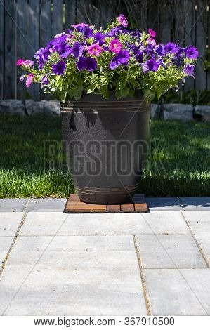 A Decorative Pot Of Pink And Purple Petunias On A Patio In A Home Garden