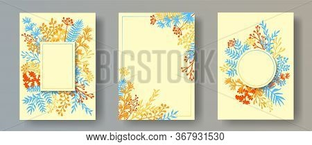 Hand Drawn Herb Twigs, Tree Branches, Leaves Floral Invitation Cards Collection. Herbal Frames Creat