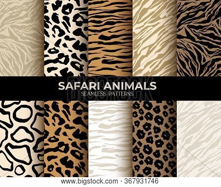 Animal Fur Print Seamless Patterns, Leopard, Tiger And Zebra Seamless Backgrounds, Vector Abstract T