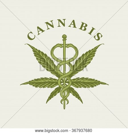 Vector Banner On The Theme Of Marijuana Legalization. Illustration With A Hand-drawn Hemp Leaf, A Ca