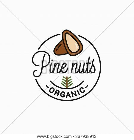 Pine Nut Logo. Round Linear Of Peeled Pine Nuts