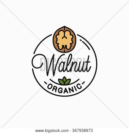 Walnut Vector Logo. Round Linear Of Walnut