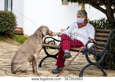 Senior Woman Wearing A Home Made Face Mask And Enjoying Some Time Outdoors With Her Pet During The C