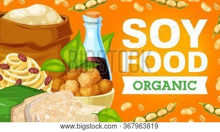Soy Products, Soybean Food. Vector Sauce, Flour In Sack And Fried Tofu Cheese, Legume Soybeans, Temp