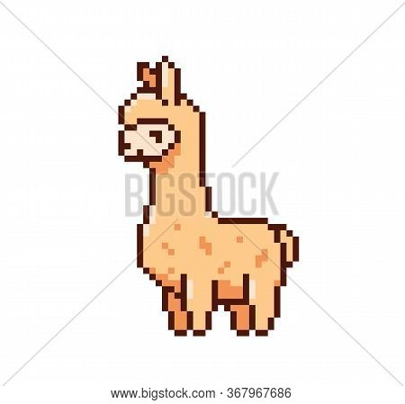 Cute Game Art Pixel Lama On White Background