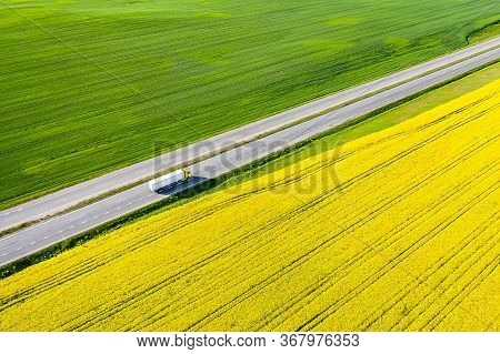 Cargo Transportation By Land. A Truck Carries Goods Along A Road In A Yellow Field. Freight Concept.