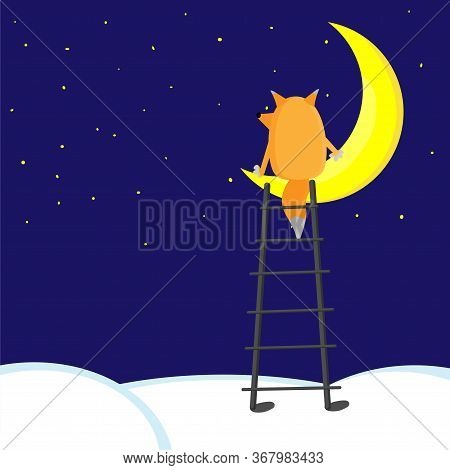 Cartoon Fox Seating On Half Moon On Midnight. Fox Dreaming And Thinking About Everything. Stars On S