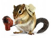 Funny chipmunk cowboy with stick horse on white poster