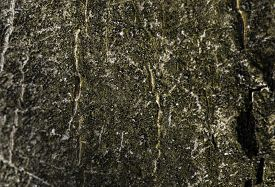 Old Woodeen Texture For Background. Close Up