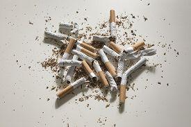 Broken Cigarette On White Background , World No Tobacco Day.