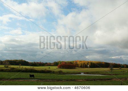 Michigan Farmland
