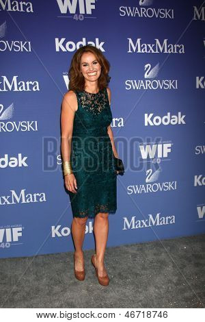 LOS ANGELES - JUN 12:  Amy Brenneman arrives at the Crystal and Lucy Awards 2013 at the Beverly Hilton Hotel on June 12, 2013 in Beverly Hills, CA