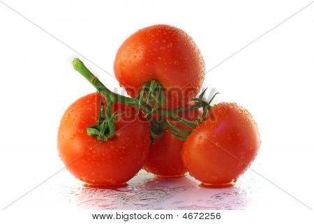 Tomatoes With Waterdrops