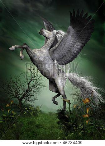 Dapple Grey Pegasus