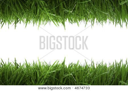 Frame Background With Green Grass