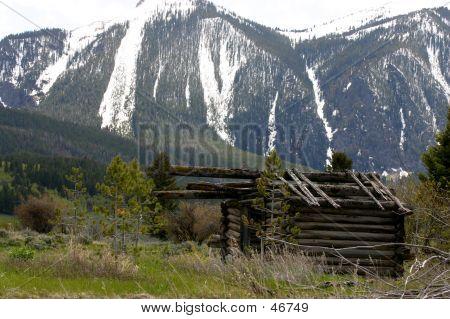 Unfinished Log Cabin
