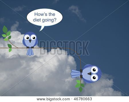 Bird on a diet