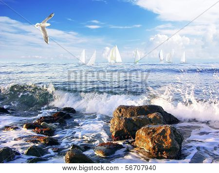 sailing regatta, blue sky and white clouds on background.