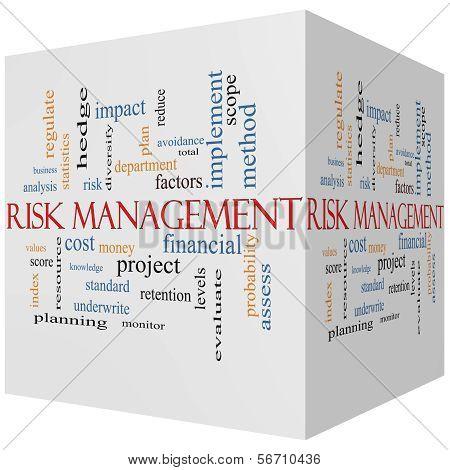 Risk Management 3D Cube Word Cloud Concept