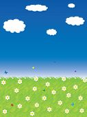 Beautiful summer background with butterflies and flowers poster