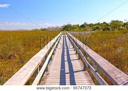 Boardwalk Through A Wetland Marsh