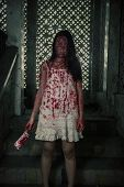 Suicidal girl in haunted school with cleaver poster