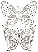 Butterflies, monochrome contours on a white background. Vector poster