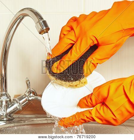Hands in rubber gloves with sponge wash plate under running water
