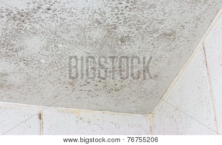 Ceiling mould shown on the interior of a white tiled bathroom a common source of unhealthy damage and decay that forms when funghus grows in a poorly ventilated room. poster