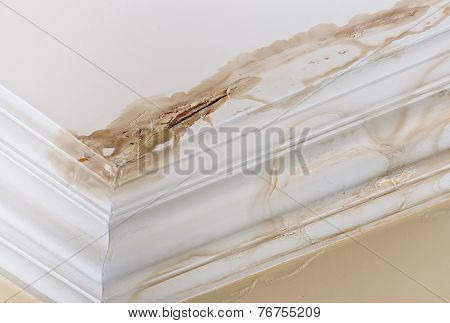 Ceiling Water Damage
