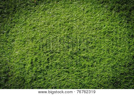 image of Artificial grass taken from the top poster