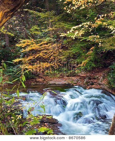 Great Smoky Waterfall
