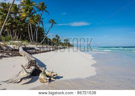 Tulum Beach View, Caribbean Paradise, At Quintana Roo, Mexico.