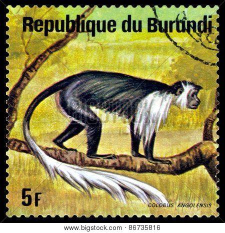 Vintage  Postage Stamp. Colobus Monkey. Animals Burundi.