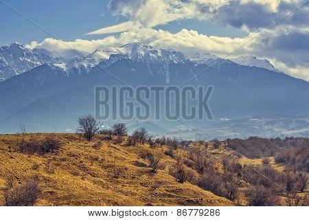 Bucegi Mountains Vernal Landscape