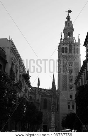 La Giralda In Black And White