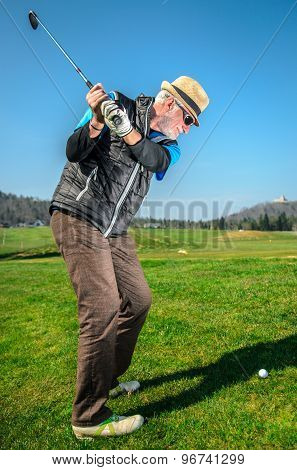 Senior citizen is playing golf. Active retirement. A man is golfing to stay in shape. On green grass with woods in the background poster