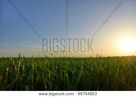 Power line in the field
