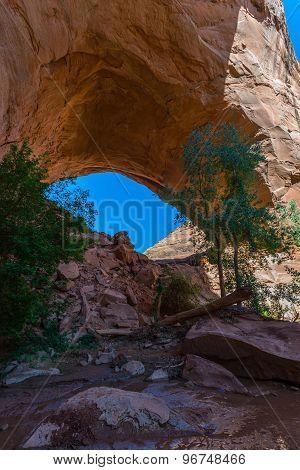 Beautiful Jacob Hamblin Arch In Coyote Gulch
