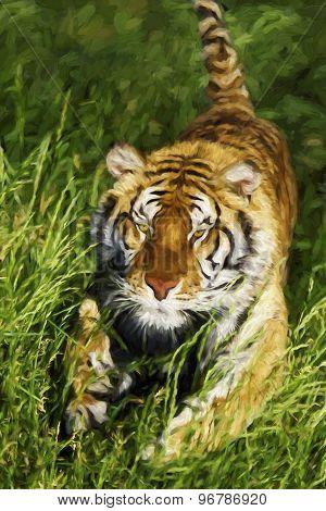 Fine Art Print Of Bengal Tiger Charging Through Grass