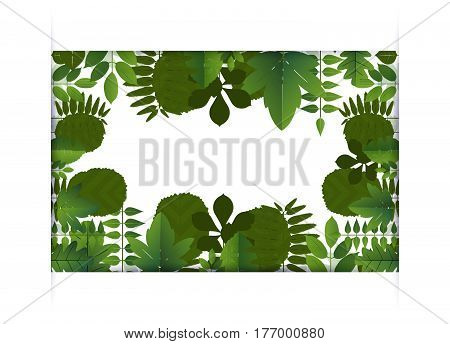 Banner Of Leaf Border Blank Center Space For Text. Vector Illustration.