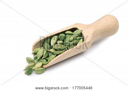 green cardamom in wooden scoop isolated on white background. Heap of cardamon pods. Indian spice. Condiment