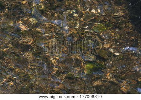 River floor texture. Pebbles underwater in sunlight.