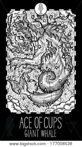 Ace of cups. Giant whale. Minor Arcana Tarot card. Fantasy line art illustration. Engraved vector drawing. See all collection in my portfolio set.