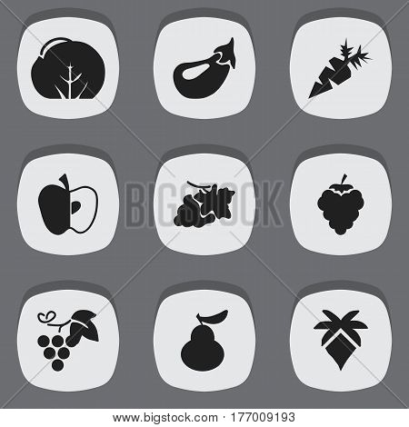 Set Of 9 Editable Dessert Icons. Includes Symbols Such As Root Vegetable, Palm, Cauliflower And More. Can Be Used For Web, Mobile, UI And Infographic Design.